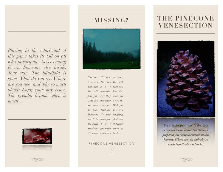 pinecone venesection-page-001